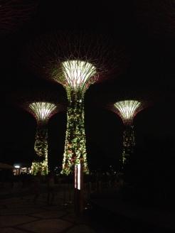 instalacje-drzewa w Gardens by the Bay